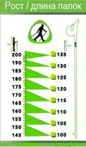 exercise-nordic-walking-sticks-1